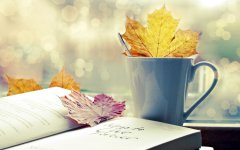 自考有学籍吗?中专学历可以考自考本科吗?